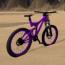 Bike of the Wild