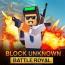 Forte Craft Unknown Battlegrounds Royale