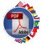 PDF Translator Multilizer