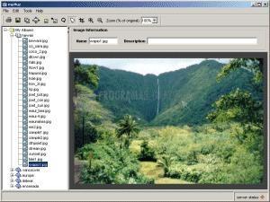 Pantallazo Digital Photo Wizard