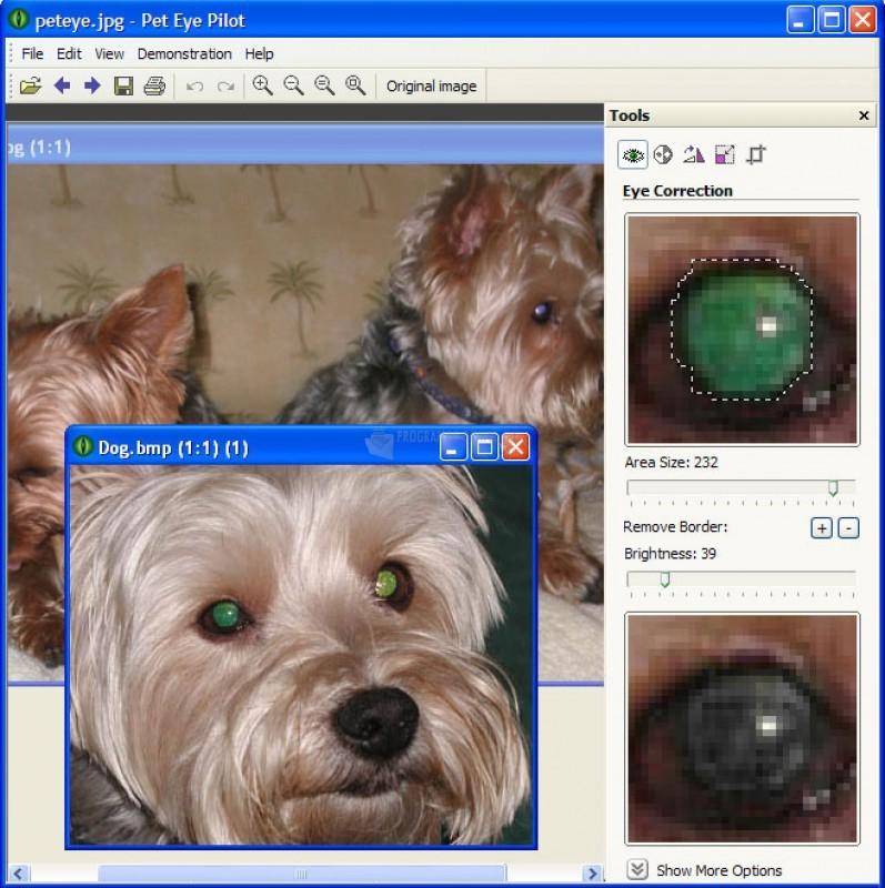 Pantallazo Pet Eye Pilot