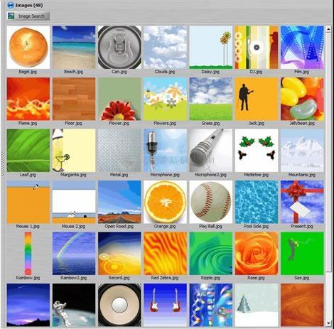 Pantallazo CD and DVD Label Software