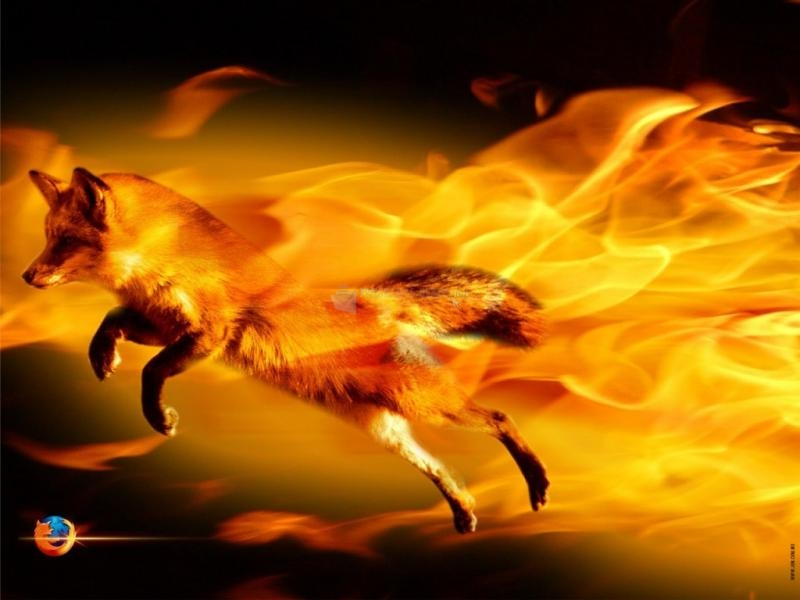 Pantallazo Fire Fox