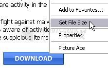 Pantallazo Get File Size