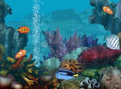 screen seever acquario gratis pc