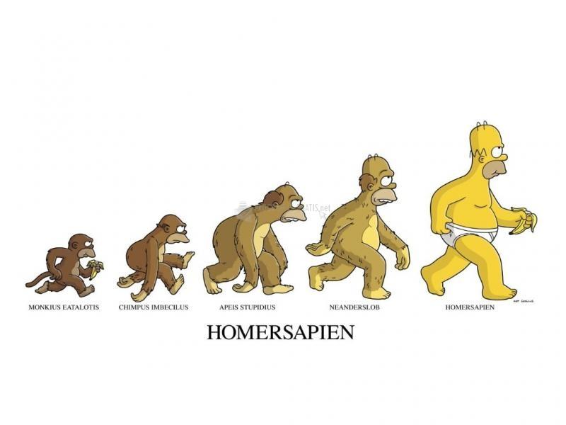 Pantallazo Homer Sapiens