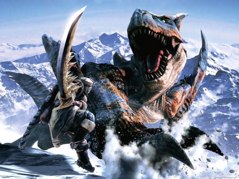 Pantallazo Monster Hunter