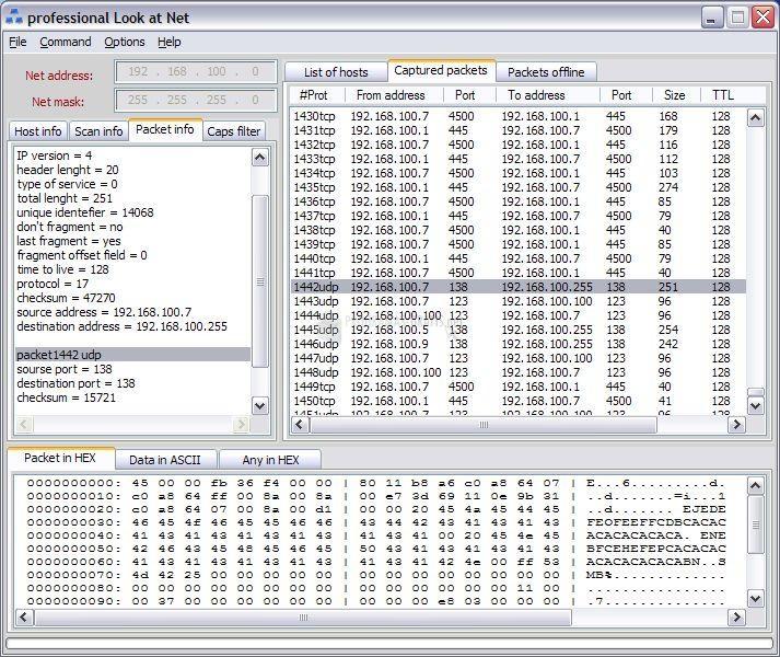 Pantallazo Professional Look at Net