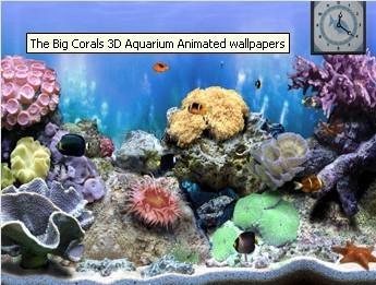 Pantallazo The Big Corals
