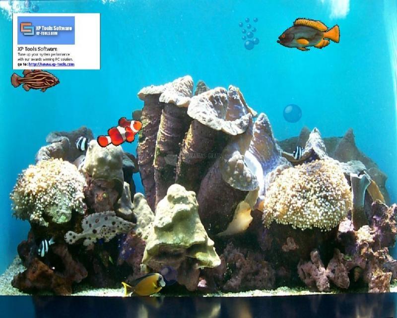 Pantallazo XP Tools Software Aquarium