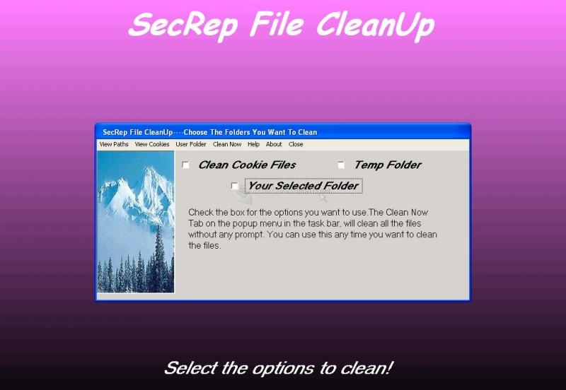 Pantallazo SecRep File CleanUp