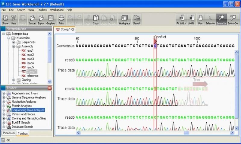Pantallazo CLC Protein Workbench