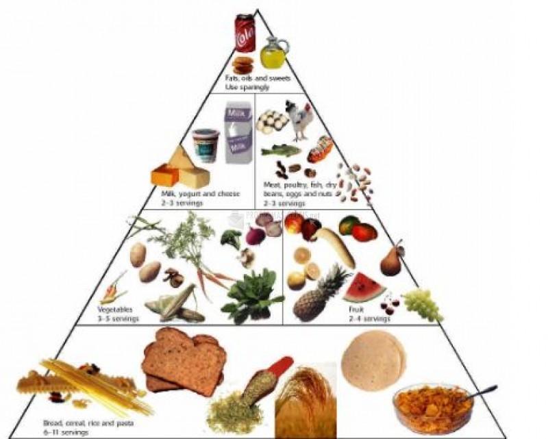 Pantallazo Food Pyramid Animated Diete