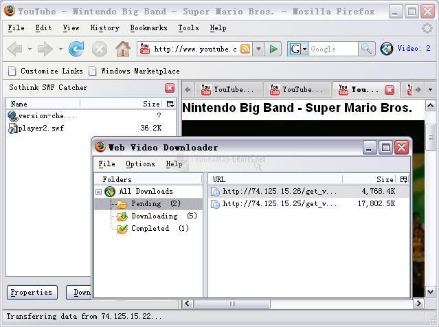 Pantallazo Sothink Web Video Downloader
