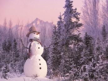 Pantallazo Snowman