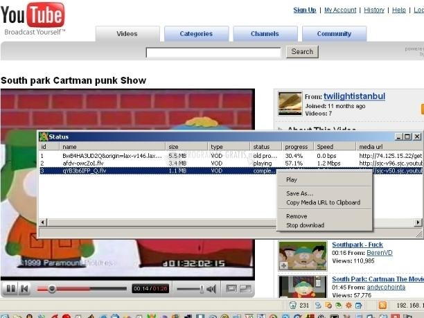 Pantallazo Easy Video Accelerator/Downloader