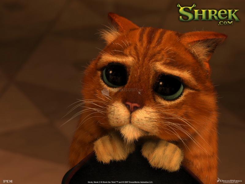 Pantallazo Shrek 2 Wallpaper: Gato con Botas
