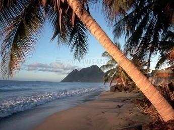 Pantallazo Playa Exótica