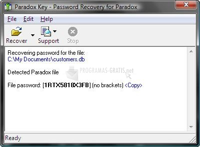 Pantallazo Paradox Key