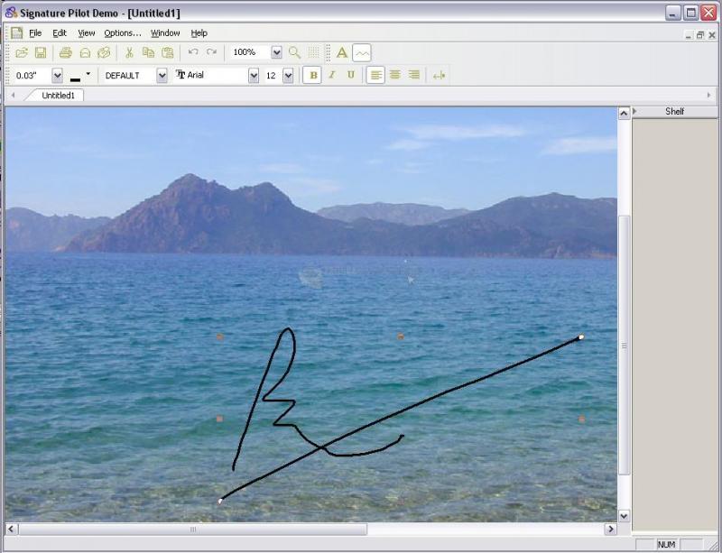 Pantallazo Signature Pilot