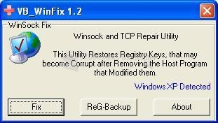 Pantallazo WinSock XP Fix