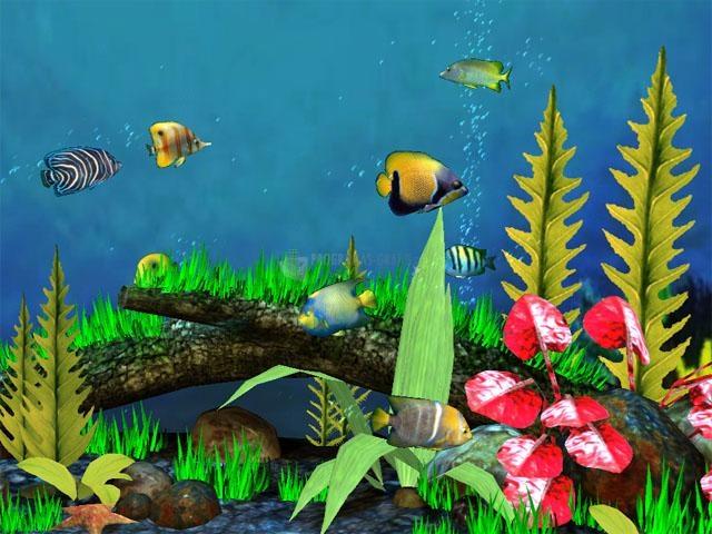 Pantallazo Fish Aquarium 3D Screensaver