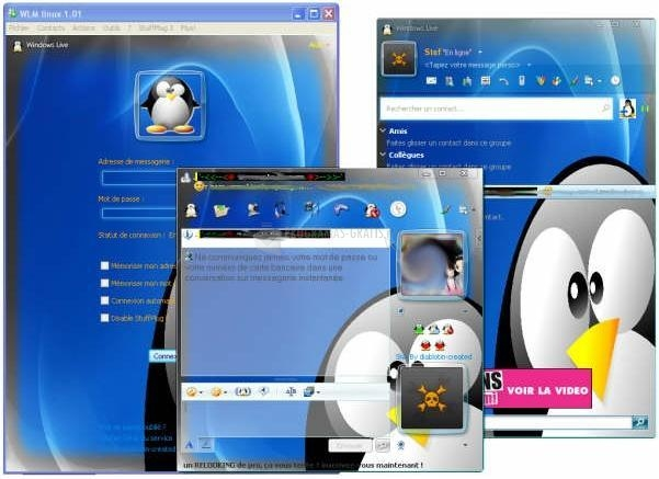 Pantallazo WLM Linux Skin for Messenger