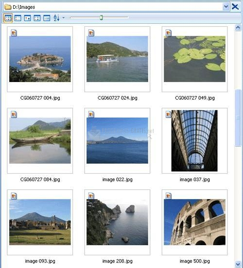 Pantallazo Photo Manager 2008 Profesional