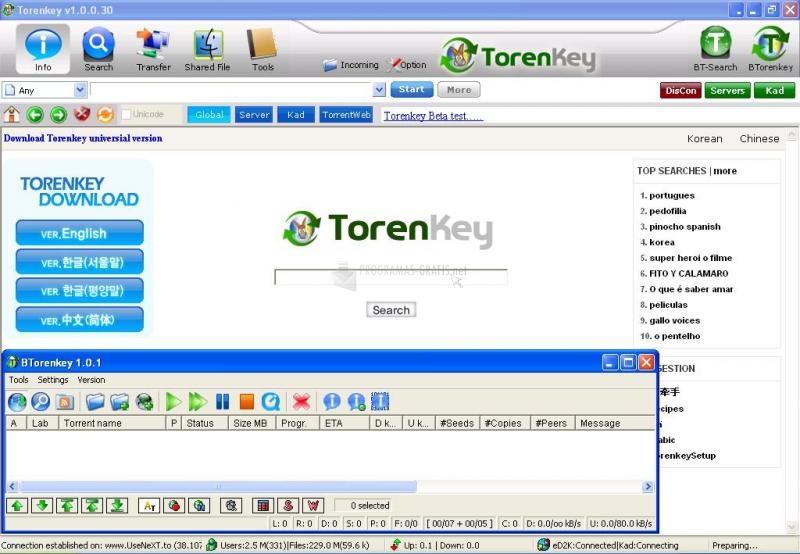 Captura TorenKey