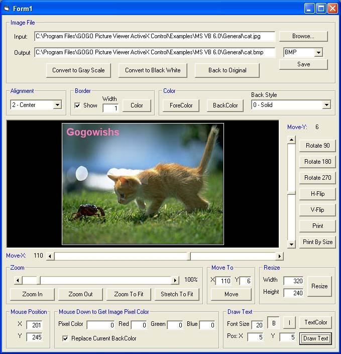 Pantallazo GOGO Picture Viewer ActiveX Control