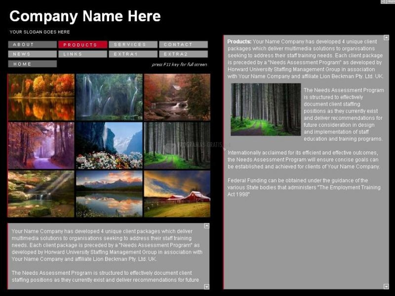 Pantallazo Blueframe Web