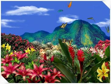 Pantallazo Living 3D Butterflies Screensaver