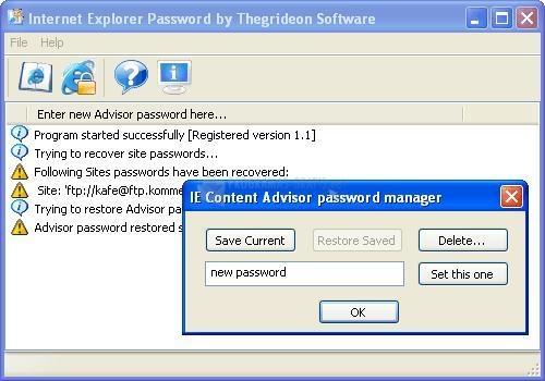 Pantallazo Internet Explorer Password