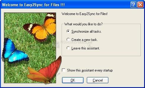 Pantallazo Easy2Sync for Files