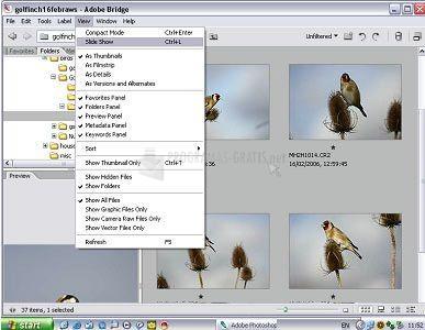 Pantallazo FLV Importer Pro for Adobe Premiere Pro