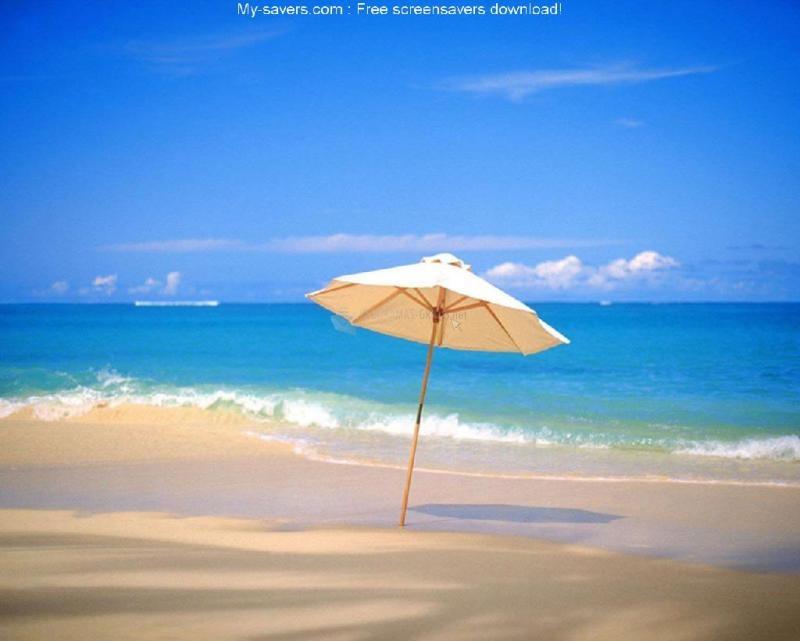Pantallazo Free South Beach Screensaver