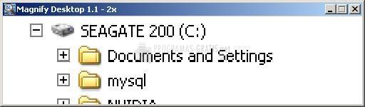 Pantallazo Altarsoft Magnify Desktop