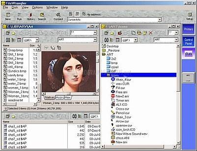 Pantallazo FileWrangler