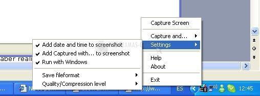 Pantallazo Screen Grabber