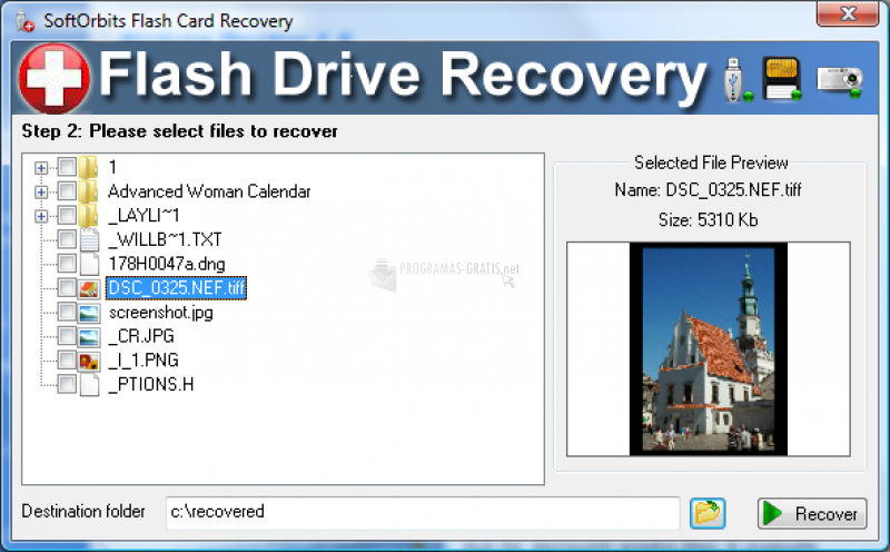 Foto Flash Drive Recovery