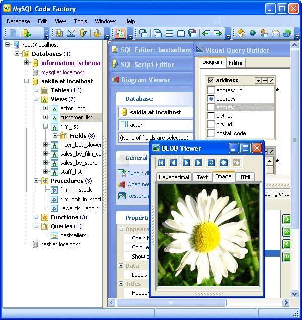Pantallazo Code Factory for MySQL