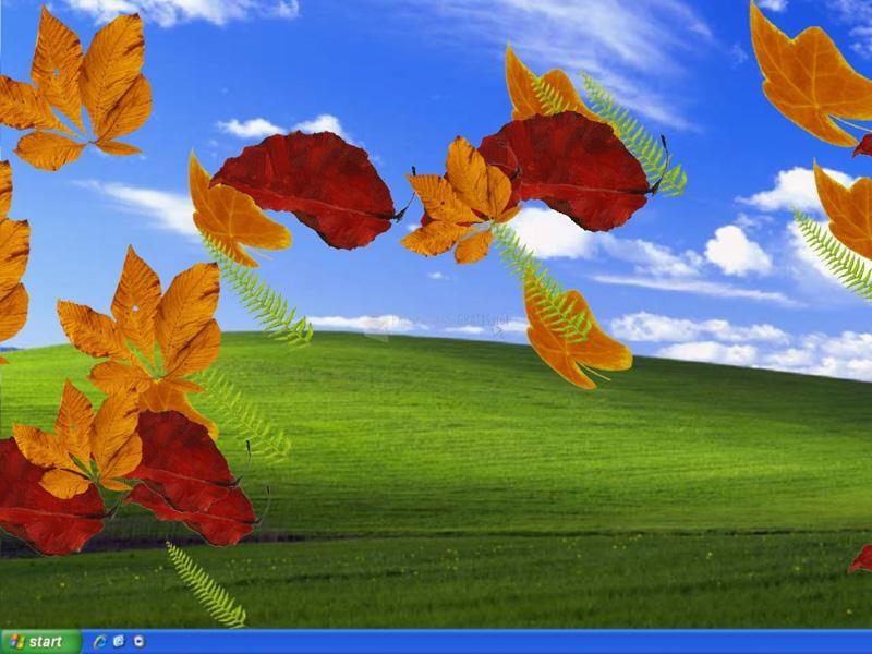 Pantallazo EIPC Autumn Leaves
