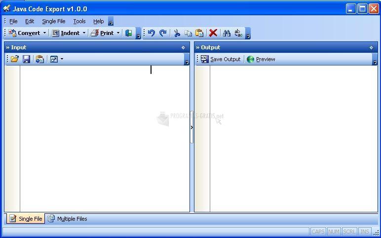 Pantallazo Java Code Export Beta