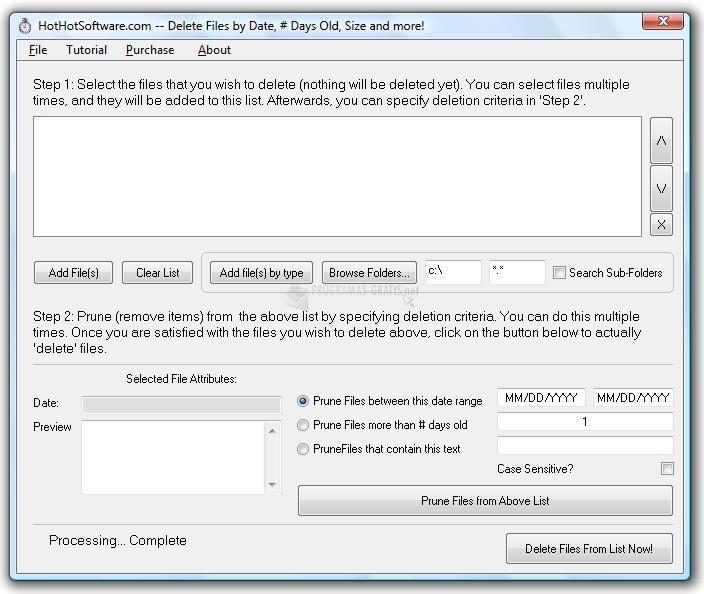 Pantallazo Delete files by date range