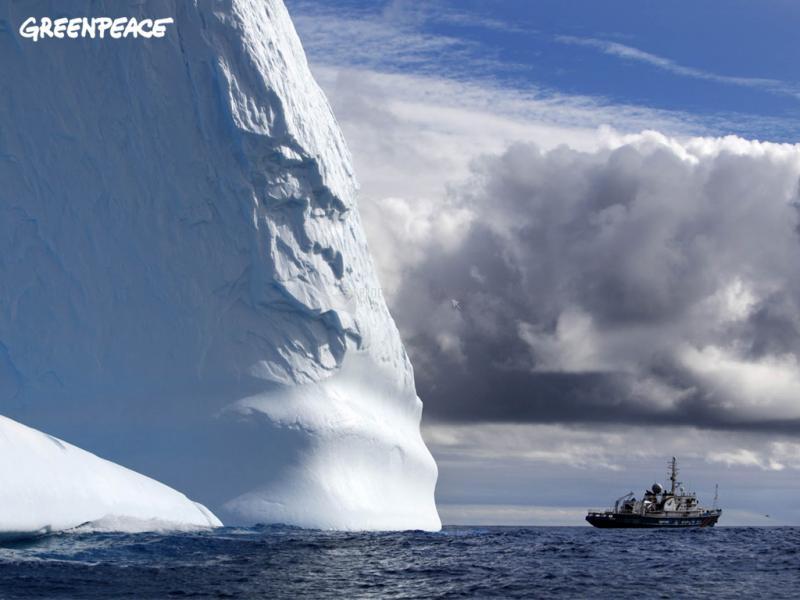 Pantallazo Greenpeace: Iceberg