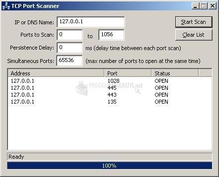 Pantallazo TCP Port Scanner