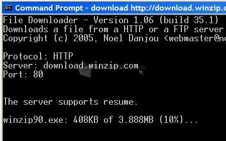 Pantallazo File Downloader