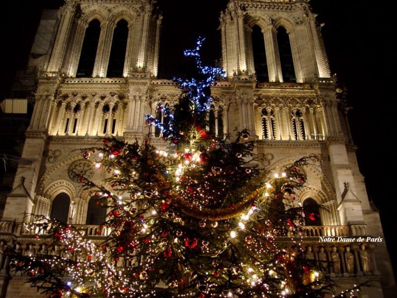 Pantallazo Notre Dame en Navidad
