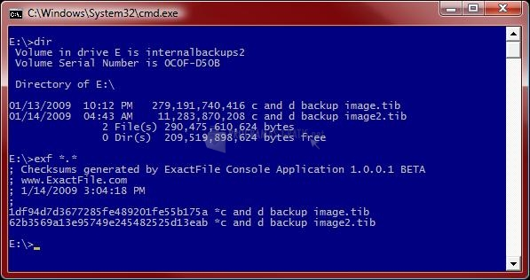 Pantallazo Exact File Console App