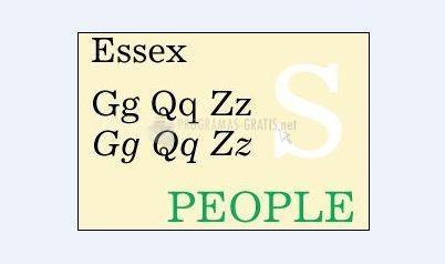 Pantallazo Essex